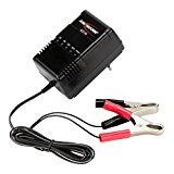 Ansmann Autobatterie-Ladegerät