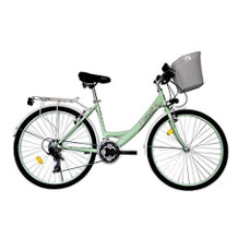 T&Y Trade Citybike