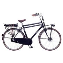 Amigo E-Bike