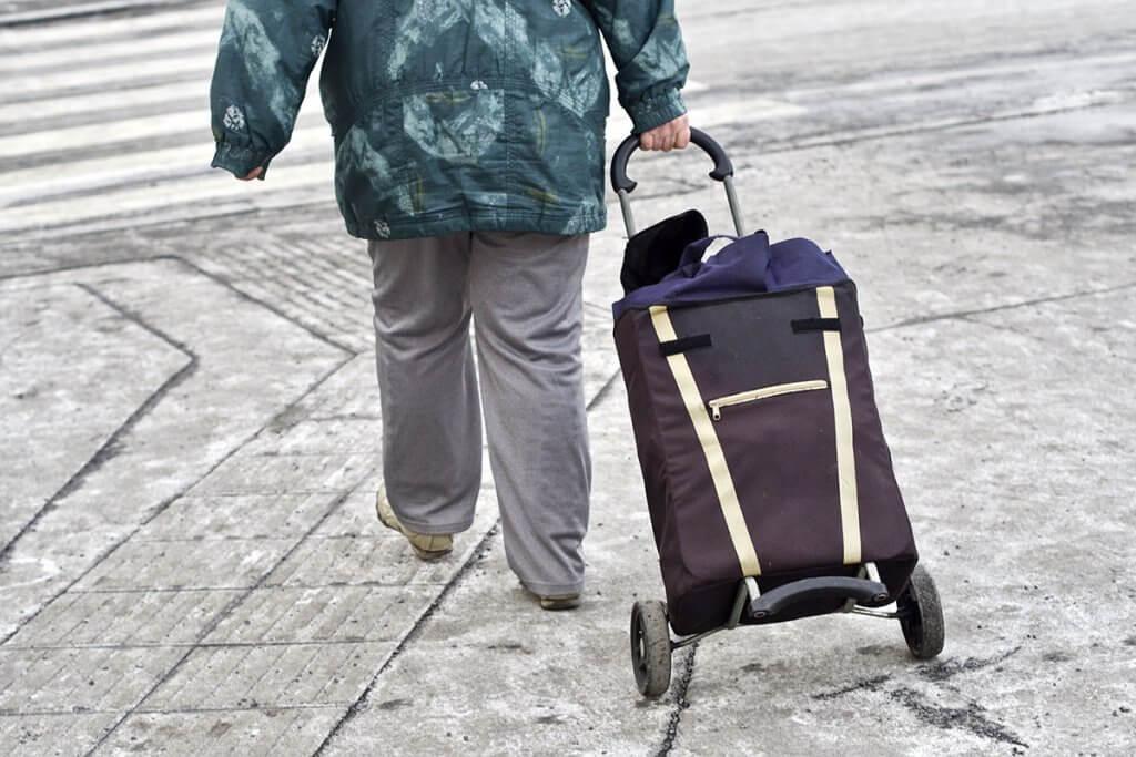 Rueckseite von einer Person mit Einkaufstrolley.