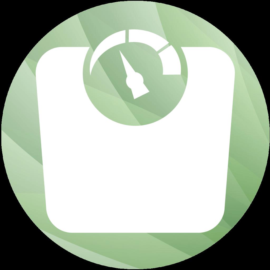 Nutzungsgewicht - Icon