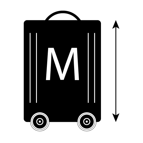 Normaler Reisekoffer (M)