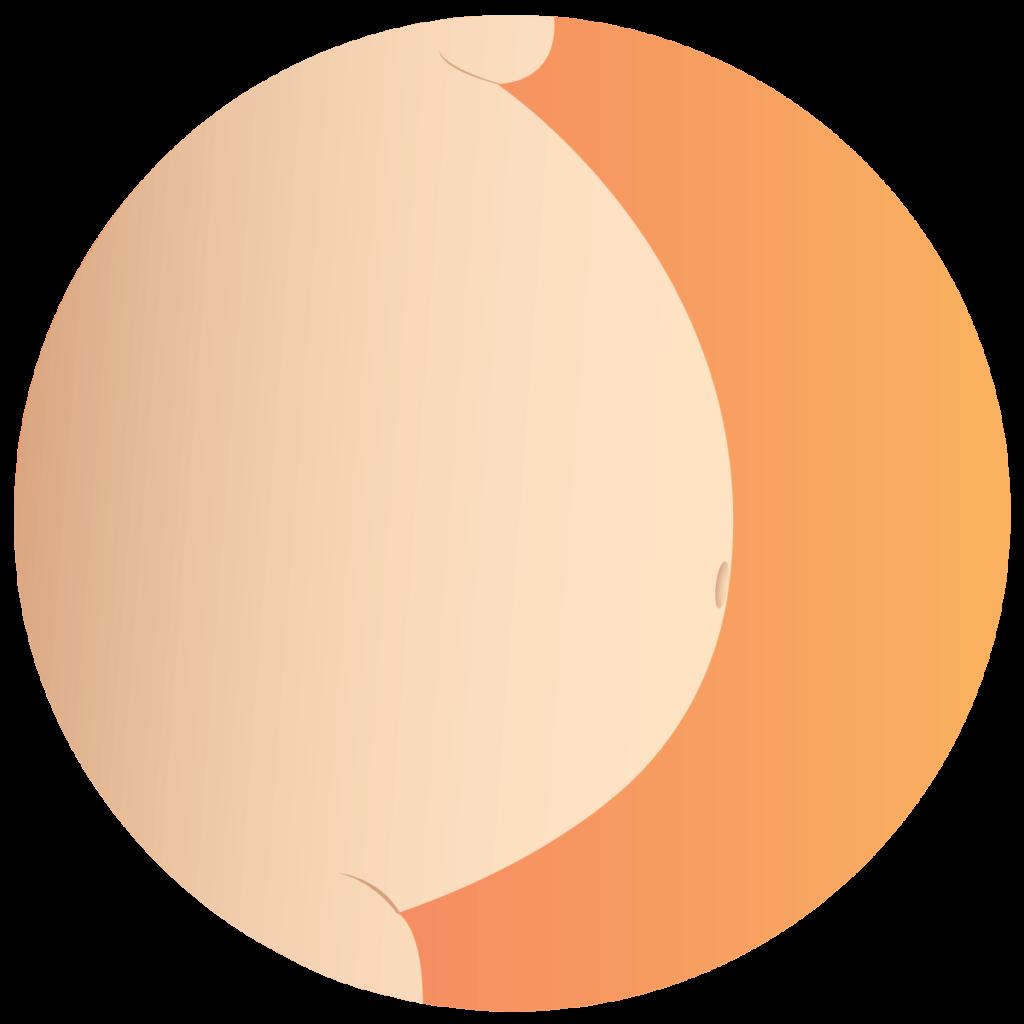 Schwanger - Icon