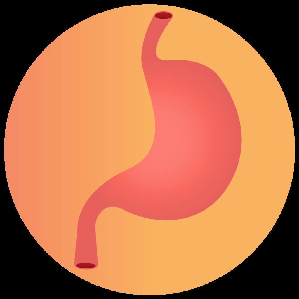verdauungsfoerdernd - Icon