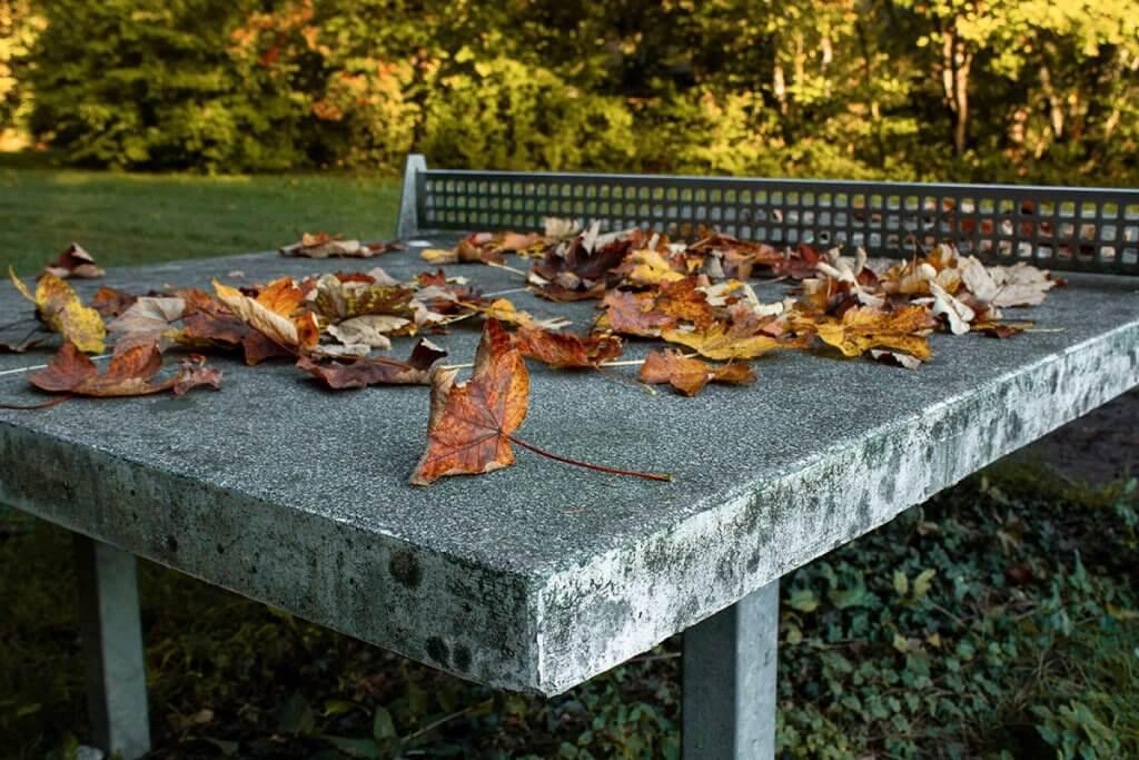Steinerne Tischtennisplatte im Herbst mit Laub