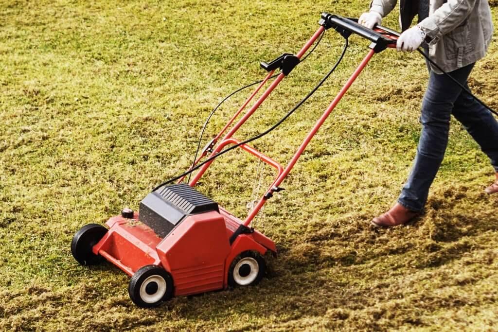 Vertikutierer wird ueber den Rasen gefuehrt