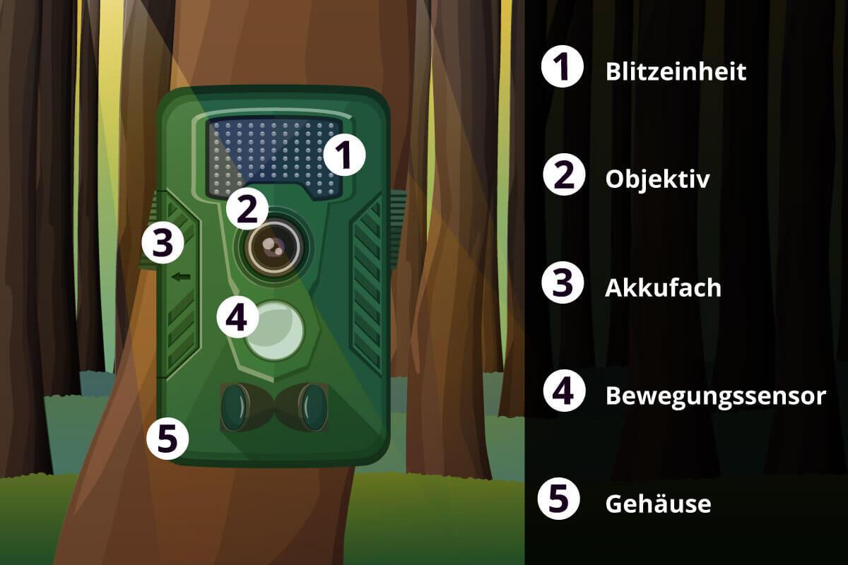 Wildkamera im Bild mit Bestandteilen